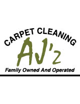 AJZ STEAM  CLEANING logo