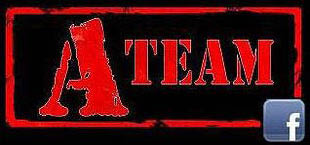A TEAM TILE GROUT CARPET & UPHOLSTERY logo
