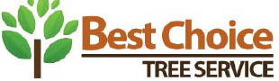 Best Choice Tree Service in Houston, TX