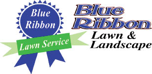 Blue Ribbon Lawn & Landscape