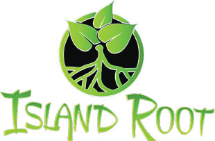 ISLAND ROOT KAVA BAR ROYAL PALM logo