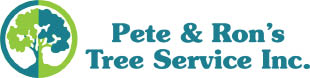 Pete and Ron's Tree service Florida