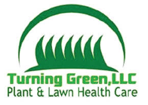 Turning Green Llc