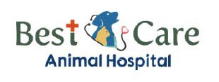 Apex Animal Hospital Llc/Best Practice Animal Hosp