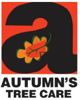 Autumn's Tree Care in Madison, WI logo