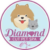 dog grooming, dog clippers, dog grooming near me, grooming, cat grooming, pet grooming near me