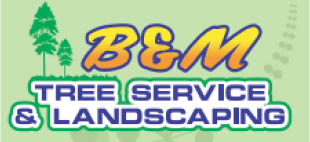 B & M Tree Service & Landscaping in Minnesota logo