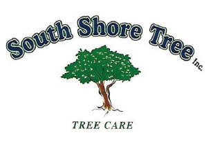 SOUTH SHORE TREE INC logo