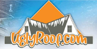Ugly Roof Llc